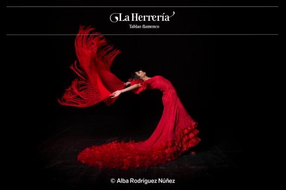 Alba Rodriguez-6